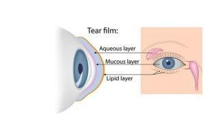 Tear Film